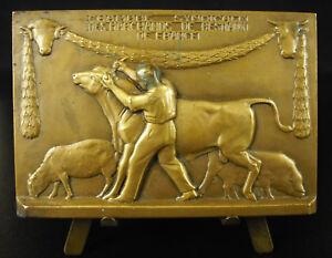 Medal-c1930-Art-Deco-Merchant-New-Livestock-Dealers-R-Cochet-Medal