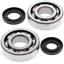 Crank-Bearing-amp-Seal-Kit-1998-Kawasaki-KX250-All-Balls-24-1010 miniature 1