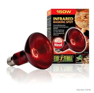 Exo Terra Infrared Basking Spot Lamp 150 Watt Ebay