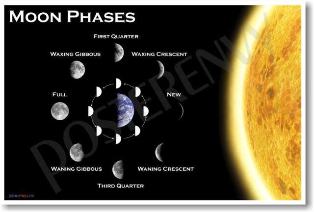 Moon Phases NEW EDUCATIONAL TEACHER CLASSROOM SCIENCE SPACE ASTRONOMY POSTER