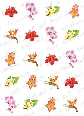 """20 Nail Decals * SUMMERTIME FLOWER ASSORTMENt""""  Water Slide Nail Art Decals"""