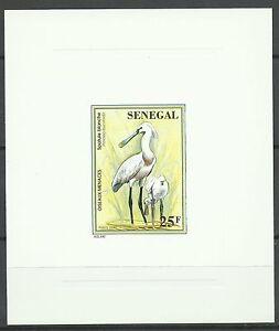 Senegal-Oiseaux-Spatules-Spoonbill-Birds-Loffler-Vogel-Epreuve-Die-Proof-1996