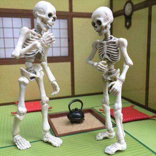 Bones Skeleton Human Model Skull Full Body Mini Figure Toy Halloween US Cute Mr