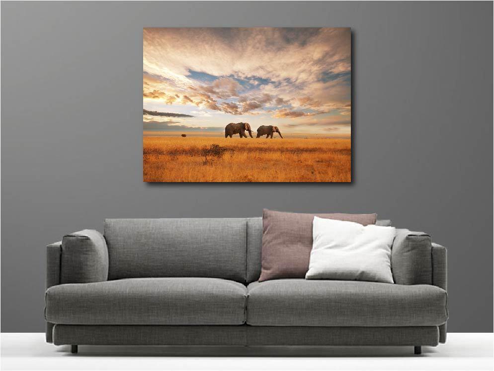 Gemälde Gemälde Deko Set Elefanten Ref 68316871