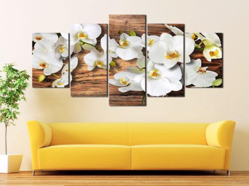 BLUMEN ORCHIDEE WEISS HOLZ Wandbilder xxl Bilder Vlies Leinwand 030110-33