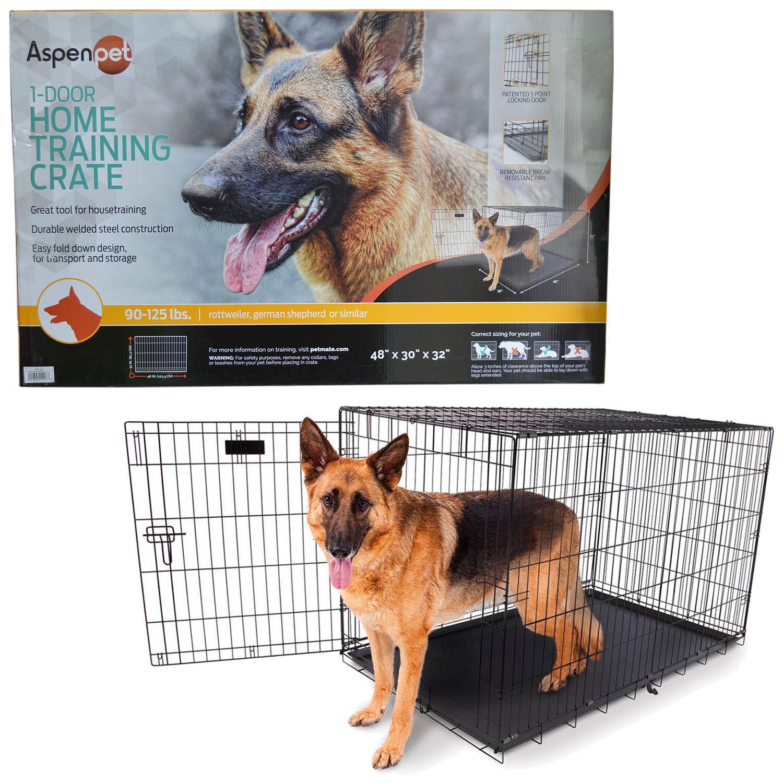 Aspen Pet 1- Door Home Training Kennel 48  90-125 LBS Dog