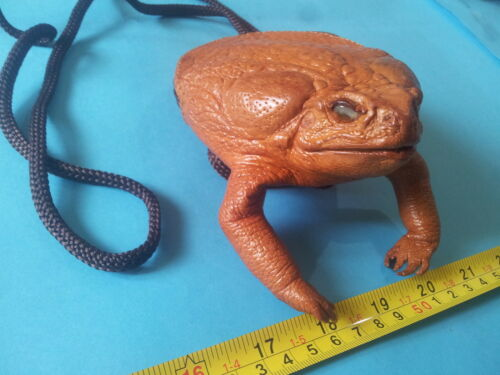 Giant tanned leather skin cane toad frog lucky Rhinella marina pest Philippine