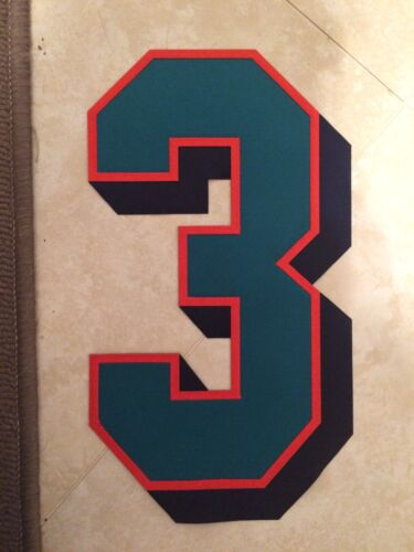 Miami Dolphins Game Jersey Number 3 Great for Autographs