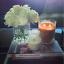 NEW-Glasshouse-Tahaa-Vanilla-Caramel-Triple-Scented-Candle-60g-Handmade-FreePost thumbnail 3