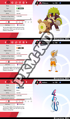 Shiny Gmax Galar Gen 8 Hidden Ability Pack Pokemon Sword Shield Cinderace Ebay Pokédex info for cinderace for pokémon sword & shield with cinderace's stats, abilities, moves if you'd like to quickly jump to a section to find out more information about cinderace, you can use the. shiny gmax galar gen 8 hidden ability pack pokemon sword shield cinderace ebay