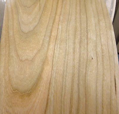 """3-1//2/"""" Maple wood veneer edgebanding roll 3.5/"""" x 120/"""" with preglued adhesive"""