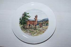 Vintage-Kaiser-W-Germany-Porcelain-piatto-con-CAPRIOLI