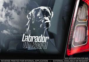 Labrador - Car Window Sticker - Dog Sign -V07