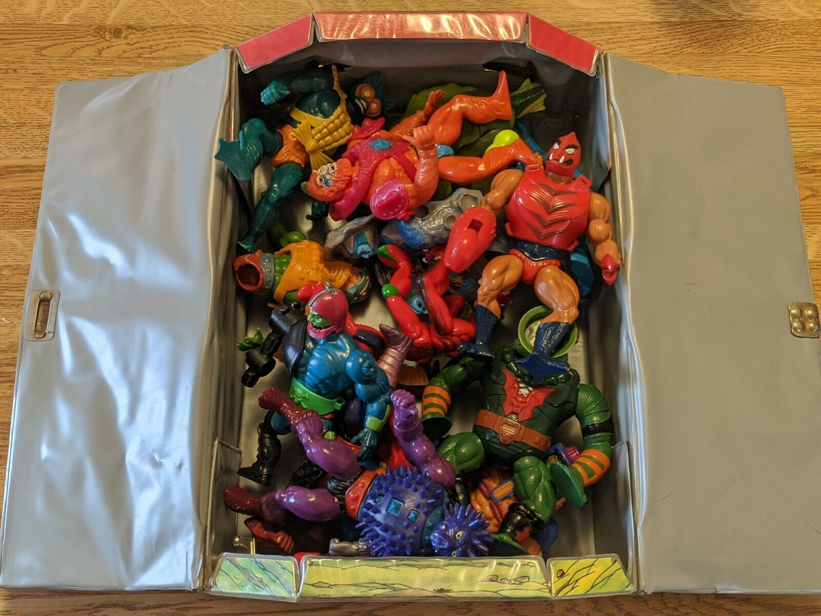13 Masters of the Universe He Man MOTU in Carrying Case