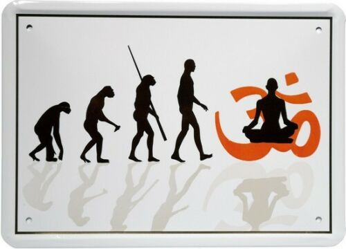 Evolution Yoga Meditation Feng Shui 15x21 Funny Spruch Blechschild MJ74