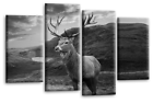 Scottish Highland Stag Wall Art Picture Grey White Split Panel Print Framed