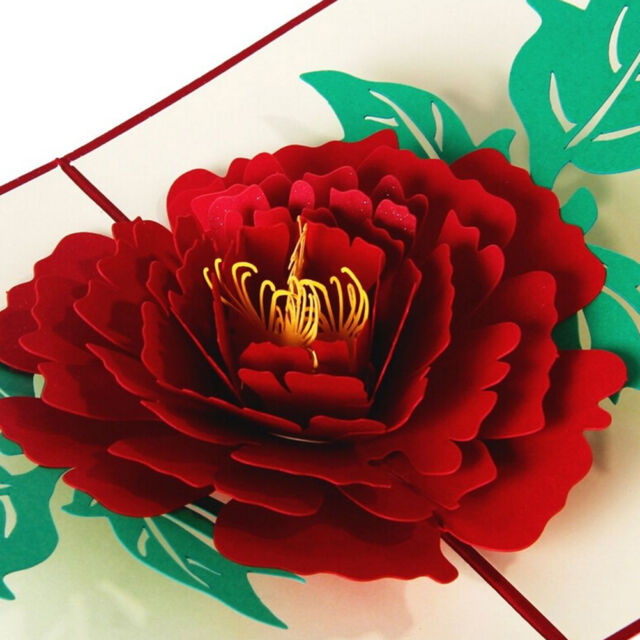 3D Up Greeting Cards Peony For Birthday Valentine Mother Day Christmas TS