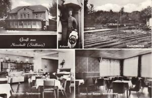 uralte-AK-Neustadt-Suedharz-Roland-Freilichtbuehne-Ratskeller-1977-Nr-79