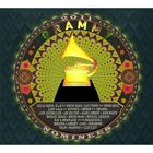 2011 Grammy Nominees Various Artists Audio CD