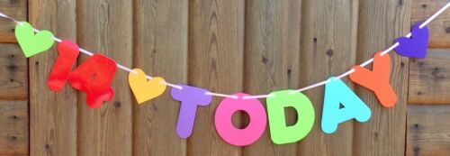 Details about  /GIRLS 14th MULTI COLOUR BIRTHDAY BANNER PARTY BUNTING 14 TODAY WITH HEARTS