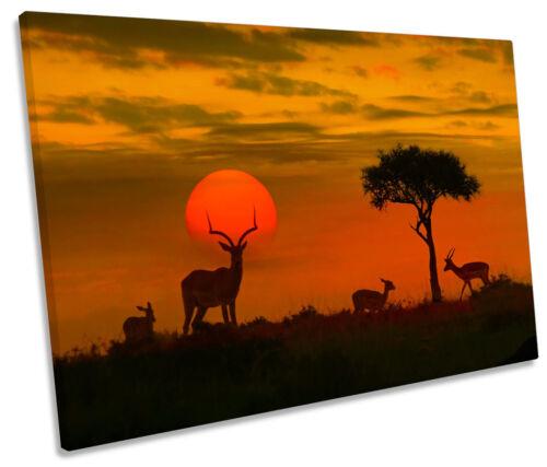Africa Sunset Wildlife Safari CANVAS WALL ART Picture Print Single