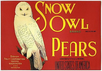 SNOW OWL~ORIGINAL 1920s AUTHENTIC YAKIMA WASHINGTON PEAR FRUIT CRATE LABEL (RED)