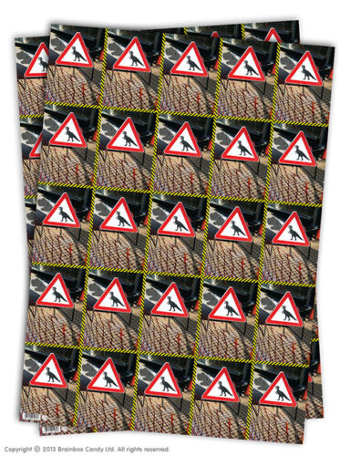 Wrapping Paper Gift Wrap 2 Sheets Funny Rude Comedy Humour Novelty Cheeky Joke