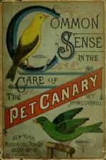 82 RARE CAGE BIRD BOOKS ON DVD - CANARY BREEDING BUDGIE FINCH PARROT BIRD AVIARY