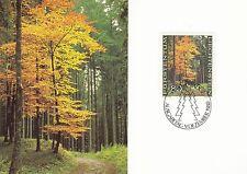 Liechtenstein Maxi Card Nr. 759 mit FDC-Stempel - Buche im Herbst