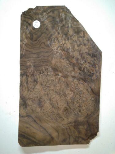CONSECUTIVE SHEETS OF AMERICAN BURR WALNUT VENEER 34 X 21 cm AM#133  MARQUETRY