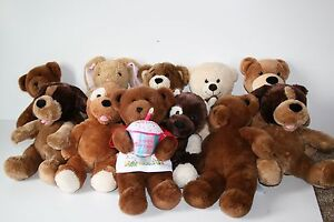 Image Is Loading Build A Bear Birthday Party Lot Of 11
