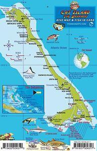 Cat Island Bahamas Dive Map Reef Creatures Laminated Fish Card