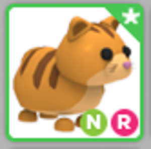Ginger Cat Neon Ride Ultra Rare Adopt Me Roblox Pet Ebay
