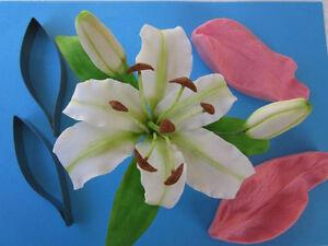 Casablanca Lily Cutters Veiner Cake Decorating Sugar Flower Gum