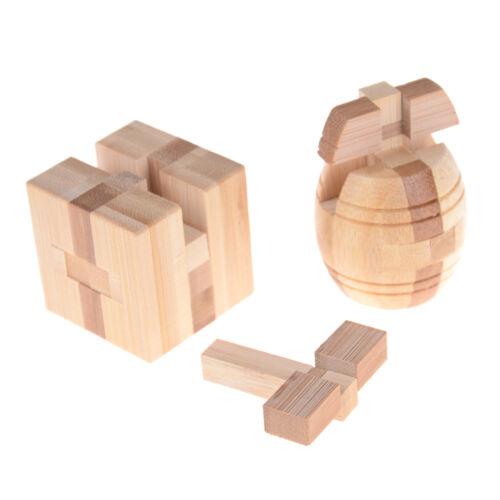 IQ Brain Teaser Kong Ming Schloss Holz Verriegelung Burr 3D Puzzles Spiel jZYB