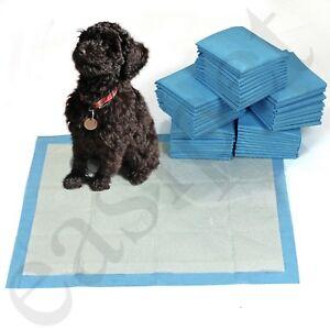 150 grandi PASTIGLIE Cucciolo Cane Pet Toilette CASA TRAINING 60x45cm Wee Vasino PIPI 'Tappetino CAT