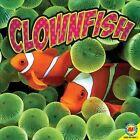 Clownfish by Pamela W McDowell (Mixed media product, 2011)