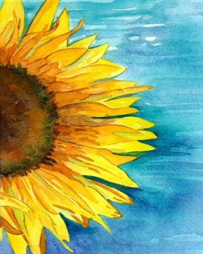 14 Van-Go Paint-By-Number Kit Collection for Beginners A Sunflower