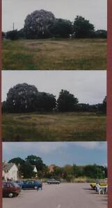 Newton-Poppleford-Station-Site-1996-photographs-db57