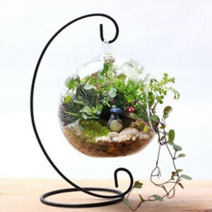 Creative-Iron-Line-Flower-Plant-Vase-Stand-Holder-Terrarium-Container-Home-Decor
