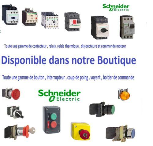 Tableau électrique 18 Modules 2 Rangées Schneider R9H18402