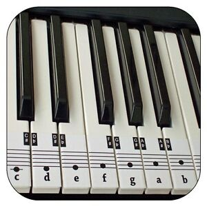 Beginners-Piano-amp-Keyboard-Music-Note-Stickers-Free-Downloadable-Placement-Guide