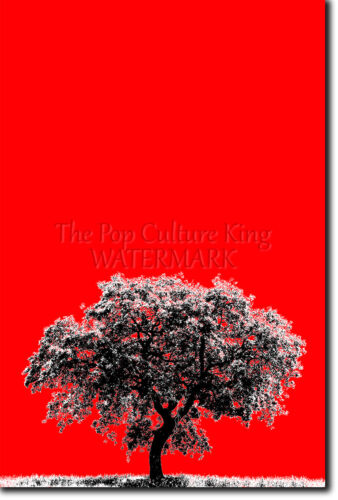 THE ICONIC OBJECT SERIES OAK TREE ART PRINT PHOTO POSTER GIFT