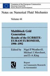 Notes on Numerical Fluid Mechanics and Multidisciplinary Design: Multiblock  Grid Generation : Results of the Ec-Brite-Euram Project Euromesh,