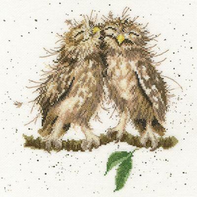 BOTHY THREADS GARDEN BIRDS 1 ROBIN WREN GREENFINCH CROSS STITCH KIT NEW