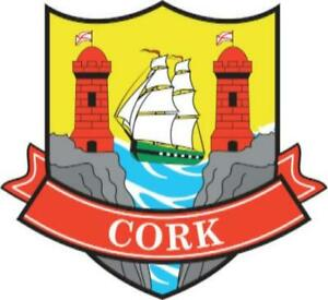 Cork County Ireland Irish Flag Embroidered Badge Patch