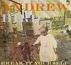 Break It Yourself by Andrew Bird (CD, Mar-2012, Spunk)