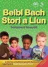 Beibl Bach Stori a Llun - Testament Newydd by Cyhoeddiadau'r Gair (Paperback, 2014)