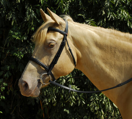 Reins Black or brown 222 Windsor Leather Snaffle Cavesson Horse Riding Bridle
