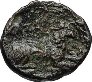 KASSANDER-316BC-Pella-Macedonia-HERCULES-LION-Original-Ancient-Greek-Coin-i66700